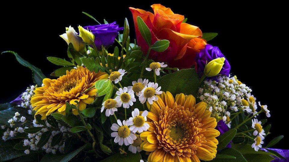 Kwiaty Na Dzień Kobiet Znaczenie Kwiatów Jakie Kwiaty Podarować