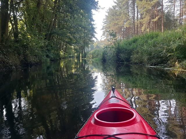 Zielona Chocina to idealna rzeka na pierwszy raz w kajaku, a w każdym przypadku na totalny relaks. Polecamy m.in. dla rodzin z małymi dziećmi. Słaby nurt, zero kamieni i drzew w wodzie, które trzeba pokonać.