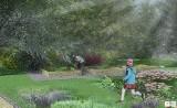 Opolski Ogród Dendrologiczny. Miasto poszukuje wykonawcy. Planowane są i nasadzenia, i wycinki [WIZUALIZACJE]