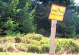 Turyści nie myślą o kontrolach na granicach. Za przekroczenie granicy poza przejściem grozi kara