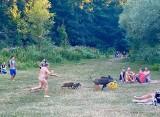 Goły mężczyzna goni dziki na plaży. Ukradły mu laptopa