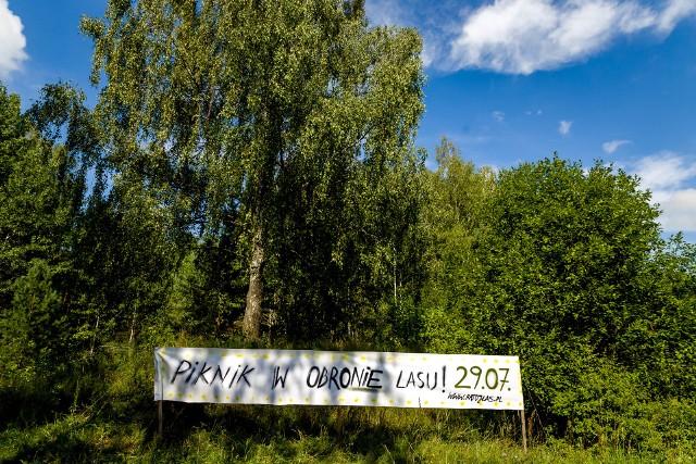 Co prawda nie należy do Białegostoku, ale w ostatnich latach to najsłynniejszy las w pobliżu miasta. Kuria metropolitarna zamierza utworzyć w jego części cmentarz. Protestują przeciwko temu mieszkańcy