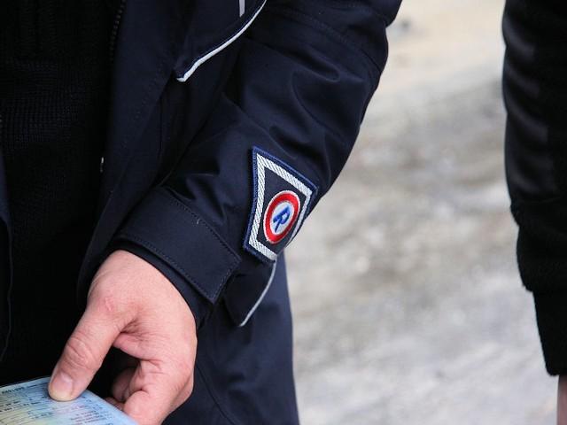 Policja w Zielonej Górze walczy z plagą potrąceń.