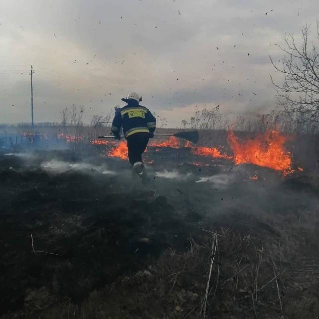 Strażacy z gminy Słomniki kilka razy w tym roku jeździli do gaszenia pożarów traw