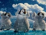 Zielonogórzanie zaśpiewali pingwinom w animacji