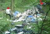 Co oni wyrabiają!? Tak wywożą śmieci samochodami i niszczą las! (ZDJĘCIA)