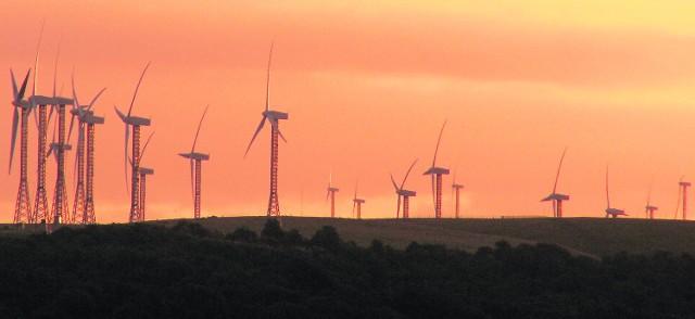 Władze gminy planują, że za kilka lat niedaleko Wyszek staną 24 turbiny. Dzięki nim do budżetu wpłynie prawie 2 mln zł rocznie, ale nie wszystkim się to podoba.