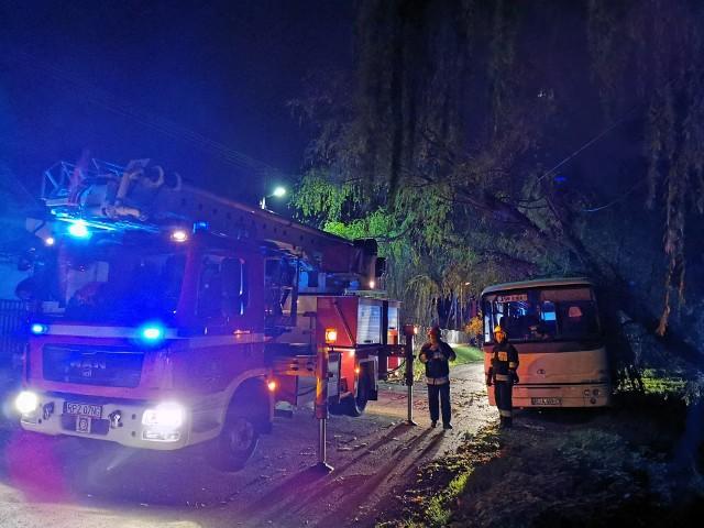 Do zdarzenia doszło we wtorek w miejscowości Siedleczka w powiecie przeworskim. - W wyniku silnych podmuchów wiatru doszło do powalenia drzewa na zaparkowany obok autobus. W wyniku zdarzenia uszkodzona została linia energetyczna oraz karoseria samochodu. W działaniach brały udział zastępy z Przeworska oraz Kańczugi - powiedział bryg. Tomasz Dzień z KP PSP w Przeworsku.W zdarzeniu nikt nie został poszkodowany.