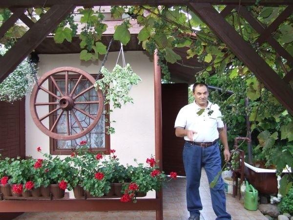 Altanka na działce państwa Wolanów to ich drugi dom, w którym gotują, wypoczywają i przyjmują gości.