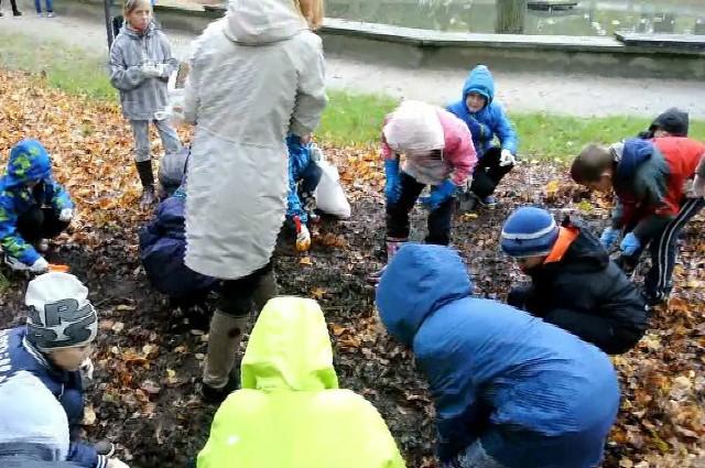 Uczniowie Szkoły Podstawowej nr 5 sadzili rośliny.