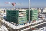 Zawisła wiecha na budynku biurowym K2 w Gdyni budowanym przez Vastint