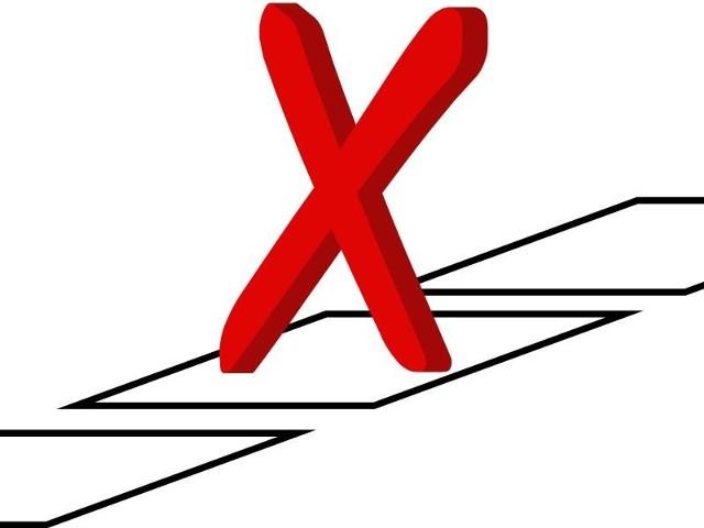Wybory odbędą się 9 października