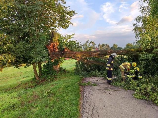 Usuwanie powalonego drzewa z drogi, 27.07.2021