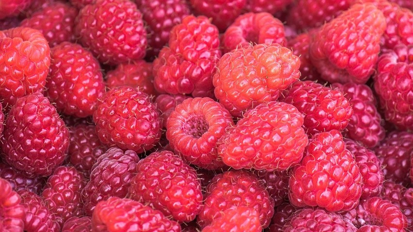 Maliny to jedne z cenniejszych dla naszego zdrowia owoców, a...