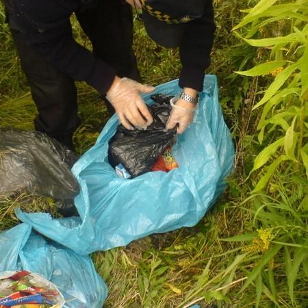 Kilkadziesiąt kilogramów gnijącego jedzenia zamiast na wysypisko odpadów trafiło w workach na miejskie ulice.