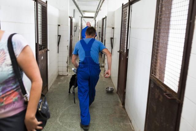 Byli więźniowie będą remontowali Przedszkole 33 w Zabrzu