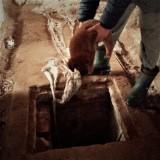 Ktoś wrzucił szczeniaki do kanału ściekowego w starej oborze. Miały tam skonać  (ZDJĘCIA)