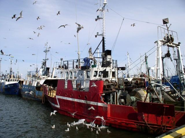 Polscy rybacy, którzy od wielu tygodni ostrzegali, iż obcięcie limitów połowowych aż o połowę będzie szkodnictwem gospodarczym i negatywnie wpłynie na całą branżę rybołówstwa, dzisiaj cieszą się z limitów połowowych na 2014-15.