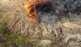 Mieszkaniec Zatora podpalił łąkę, ale nie zdążył uciec z płonącego terenu. Za swoją głupotę omal nie zapłacił życiem