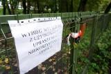 Lublin. Psy nie wejdą dopóki nie wyrośnie trawa. Kolejne poprawki w parku Ludowym