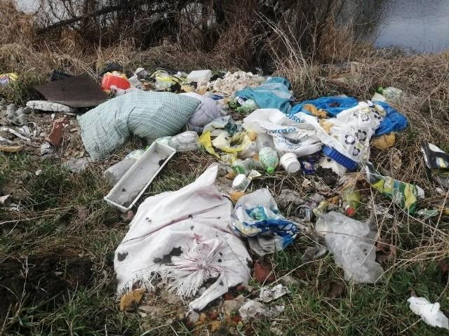 Brzeg Prosny w Kościelnej Wsi lubią wędkarze i... śmieciarze. Co najmniej kilka razy w roku powstaje tam nowe dzikie wysypisko, na które najczęściej trafiają odpady budowlane i śmieci z warsztatów samochodowych