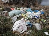 Fotopułapki mają być sposobem na śmieciarzy w Kościelnej Wsi. Tymczasem powstało nowe dzikie wysypisko [ZDJĘCIA]