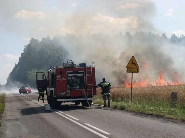 Pożar zboża w Wachowie (powiat oleski).