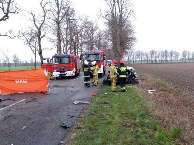 W sobotę, 17 kwietnia doszło do wypadku pomiędzy Przyprostynią a Chobienicami. Samochód osobowy uderzył w drzewo. Ranny mężczyzna był reanimowany. Niestety nie udało się go uratować.