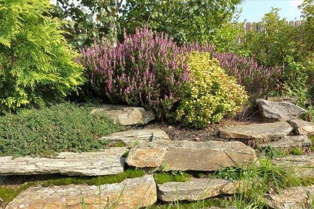 Jesienne nawożenie ogorduWrzesień jest czasem na wykonanie ostatniego przed zimą nawożenia roślin ogrodowych. Jesienne nawozy mają wysoką zawartość fosforu i potasu, ale zawierają bardzo mało azotu lub nie mają go wcale. Natomiast na koniec sezonu (w październiku lub listopadzie) warto raz na dwa, trzy lata zastosować do gleby kompost lub obornik.