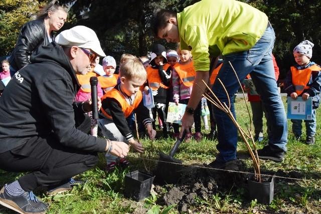 Przed bielską szkołą Klub Gaja z młodzieżą zasadził 100 krzewów