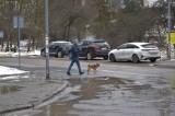 Przejście dla pieszych przez ulicę Wojska Polskiego w Kielcach uratowane. Dodatkowo powstanie azyl