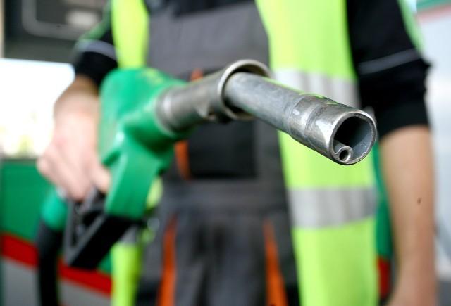 Aktualne ceny paliw w regionie (notowanie z 02.06). Podane ceny to kolejno: benzyna Pb95, diesel i gaz LPGDĘBICAAuto-Wit, ul. Wiejska3,99 zł 3,99 zł 1,68 złOrlen, ul. Rzeszowska4,08 zł 4,12 zł 1,79 zł