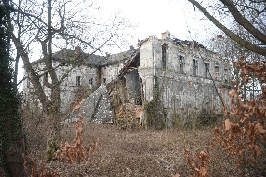 Tak obecnie wyglądają ruiny pałacu w Kosierzu (gmina Dąbie)....