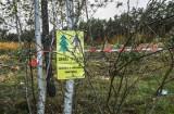 Ochrona lasów wokół Bydgoszczy - są już pierwsze zgłoszenia do mapy Lasów Narodowych