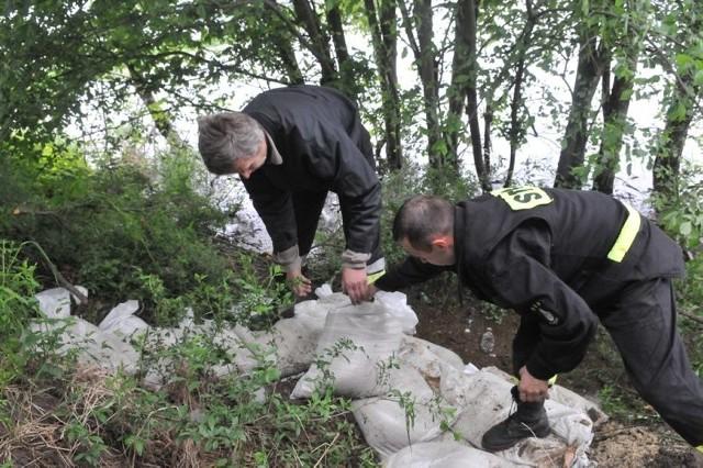 Strażacy układają worki z piaskiem w miejscu ,gdzie w wałach w okolicy Miłowa bobry porobiły dziury