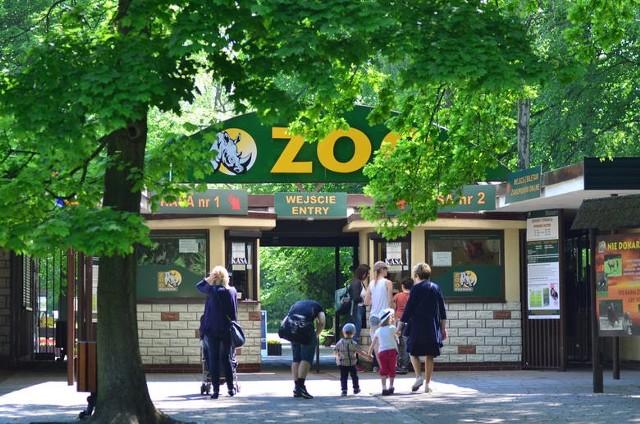 Nowe i Stare Zoo od poniedziałku 26 kwietnia będzie znów otwarte dla zwiedzających.