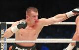 Adamek vs. Szpilka online. Transmisja TV walki w internecie (wideo)