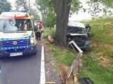 Wypadek na drodze krajowej nr 55 w Otłowcu 11.06.2018. Samochód dostawczy uderzył w drzewo [zdjęcia]