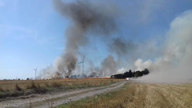 Pożar rżyska w Zakrzewie w Gminie Radzyń Chełmiński. Z ogniem walczyło 7 zastępów straży pożarnej, w tym 6 to OSP.