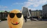 Podchody w Poznaniu - czy wiesz, gdzie poszedł Pyrek? Sprawdź, rozwiązując quiz
