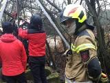 Tragiczny finał poszukiwań w powiecie zawierciańskim. W studni znaleziono zwłoki 75-latka. Policja wyjaśnia okoliczności śmierci mężczyzny