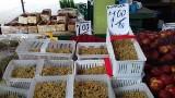 Porzeczki i agrest to letnie rarytasy z łódzkich rynków. Zapomniane owoce wracają do łask, łodzianie chętnie je kupują