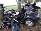 Wypadek na drodze krajowej nr 20. Auto uderzyło w drzewo (zdjęcia)