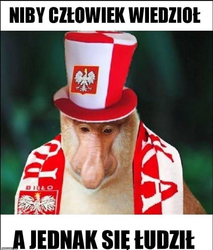 MEMY przed meczem Polska - Hiszpania: jeszcze 2 mecze i...