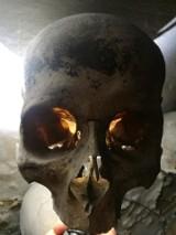 WSCHOWA. Zobaczcie zdjęcia z grobowej krypty, która ma prawie 300 lat. Pasjonaci Podziemi uwiecznili wiele szczegółów tego miejsca