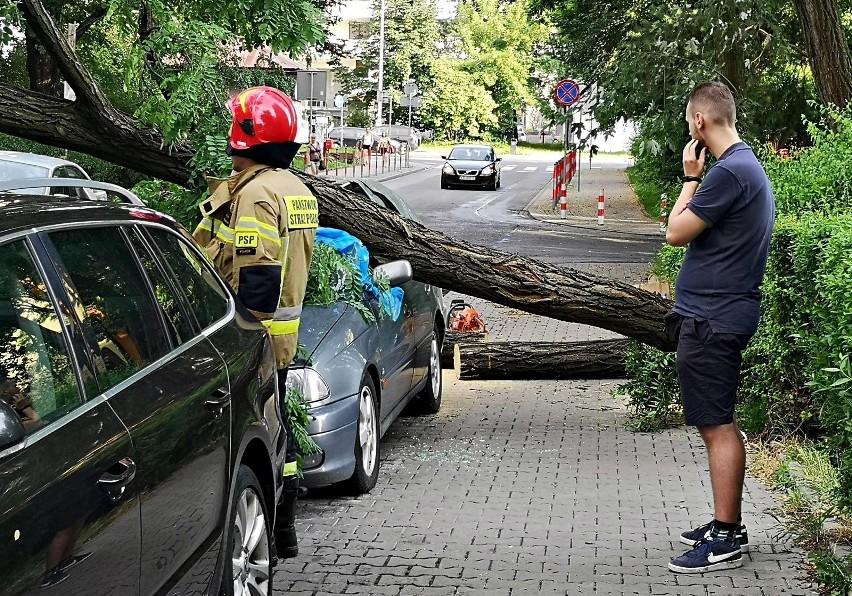 Kraków. Drzewo spadło na samochód. Trwa usuwanie szkód [ZDJĘCIA]