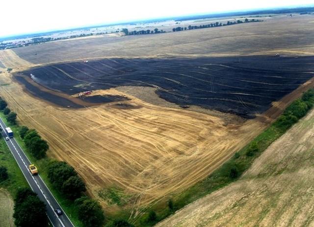 Spalone 21 hektarów zboża. Zdjęcie zrobione ze śmigłowca.