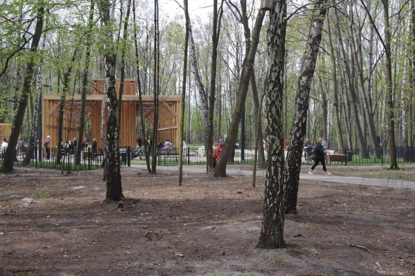 Tęznia w Katowicach
