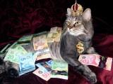 Horoskop finansowy na sierpień. Na te znaki zodiaku czekają duże pieniądze [lista]