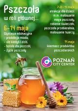Poznań City Center: Pszczoła w roli głównej